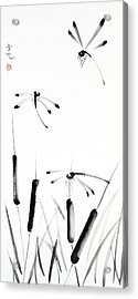 Dragonfly Dance Acrylic Print by Oiyee At Oystudio