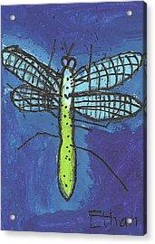 Dragonfly Acrylic Print by Fred Hanna