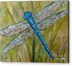 Dragonfly Acrylic Print