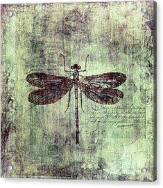 Dragonfly Acrylic Print by Priska Wettstein