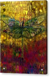 Dragonfly - Rainy Day  Acrylic Print by Jack Zulli