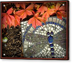 Acrylic Print featuring the photograph Dragonfly Stepping Stone by Heidi Manly