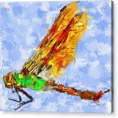 Dragonfly Thinking Acrylic Print by Yury Malkov