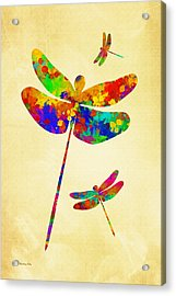 Dragonfly Watercolor Art Acrylic Print by Christina Rollo