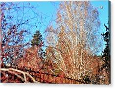 Drake Park Bridge 21655 Acrylic Print