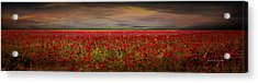 Drama Over The Flower Fields Acrylic Print by Angela A Stanton