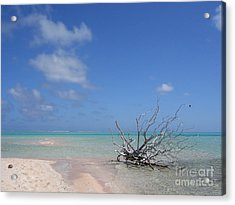 Dream Atoll  Acrylic Print by Jola Martysz