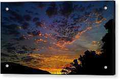 Acrylic Print featuring the photograph Dream by Chris Tarpening