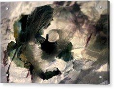 Dream Acrylic Print by Danica Radman