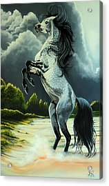 Dream Horse Series 262 - The Lost Stallion Revealed Acrylic Print by Cheryl Poland