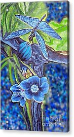 Dream Of A Blue Dragonfly Over Water Acrylic Print by Kimberlee Baxter