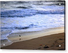 Dream On Dream Away Acrylic Print