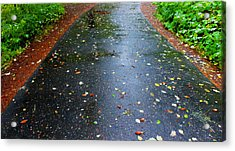 Acrylic Print featuring the photograph Dream Path by Karen Horn