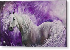 Acrylic Print featuring the painting Dream Stallion by Sherry Shipley