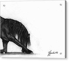 Dreamer Acrylic Print by J Ferwerda