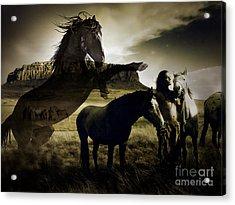 Dreaming Horses Acrylic Print
