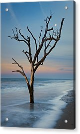 Dreaming In Dali Acrylic Print by Joseph Rossbach
