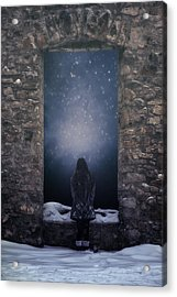 Dreaming In Snow Acrylic Print by Joana Kruse