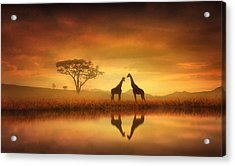 Dreaming Of Africa Acrylic Print by Jennifer Woodward