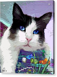 Dreaming Of Fish Acrylic Print by Michele Avanti