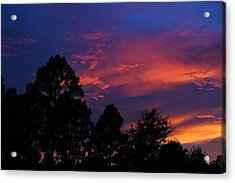 Acrylic Print featuring the photograph Dreaming Of Mobile by Julie Andel