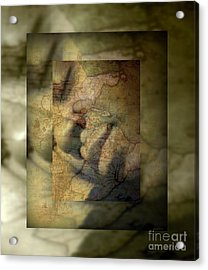 Dreaming Of What Could Be Isn't Meant To Be Acrylic Print by Fania Simon