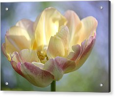 Acrylic Print featuring the photograph Dreaming by The Art Of Marilyn Ridoutt-Greene