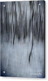 Dreamland #1 Acrylic Print