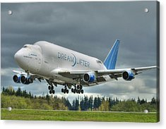 Acrylic Print featuring the photograph Dreamlifter Landing 2 by Jeff Cook