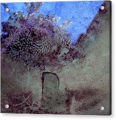 Dreams #05 Acrylic Print
