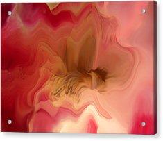 Dreams #030 Acrylic Print by Viggo Mortensen