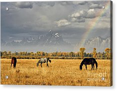 Dreams At The End Of The Rainbow Acrylic Print by Deby Dixon