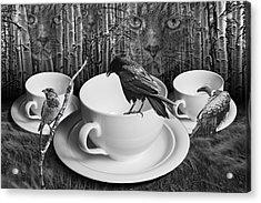 Dreams Of Cutio Acrylic Print