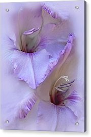 Dreams Of Purple Gladiola Flowers Acrylic Print by Jennie Marie Schell