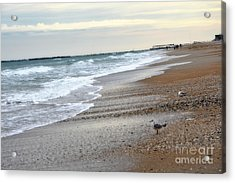 Dreamy Ocean Beach North Carolina Coastal Beach  Acrylic Print by Kathy Fornal