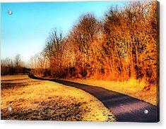 Dreamy Pathway Acrylic Print by Thomas  MacPherson Jr
