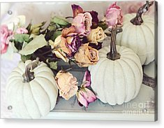 Dreamy Shabby Chic Cottage Autumn Fall Pastel Pumpkins And Dried Roses Acrylic Print by Kathy Fornal