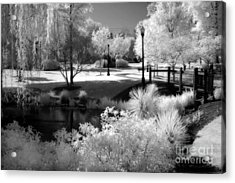 Dreamy Surreal Black White Infrared Landscape Acrylic Print by Kathy Fornal