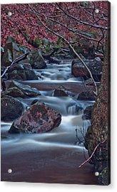 Dreamy Water  Acrylic Print by Brendan Quinn