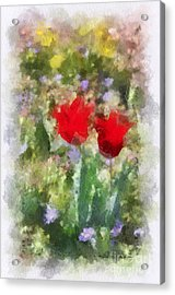 Dressed In Red  Acrylic Print by Kerri Farley