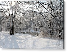 Acrylic Print featuring the photograph Dressed In Snow by Nina Silver