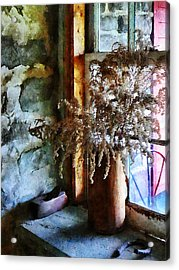 Dried Flowers On Windowsill Acrylic Print by Susan Savad
