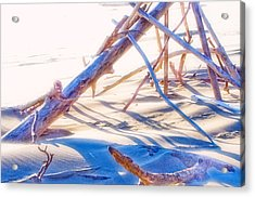 Acrylic Print featuring the photograph Driftwood 1 by Adria Trail