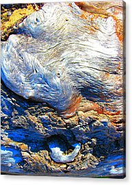 Driftwood 11 Acrylic Print
