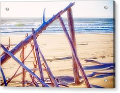 Acrylic Print featuring the photograph Driftwood 2 by Adria Trail