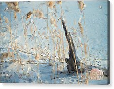 Driftwood Abstract Acrylic Print by Betty LaRue