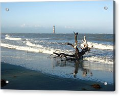 Acrylic Print featuring the photograph Driftwood And Morris Island Lighthouse by Ellen Tully