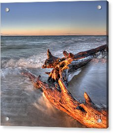 Driftwood At Whitefish Point Acrylic Print by Twenty Two North Photography