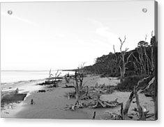 Driftwood Beach Acrylic Print by Thomas Leon