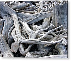 Acrylic Print featuring the photograph Driftwood by Gerry Bates